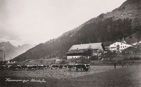 Schloss Kammer, Schwarzweißfoto 50er Jahre